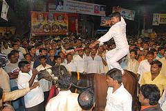 10 Skilled Yadav & trained buffalo as hundreds cheer